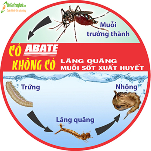 Thuoc-diet-lang-quang