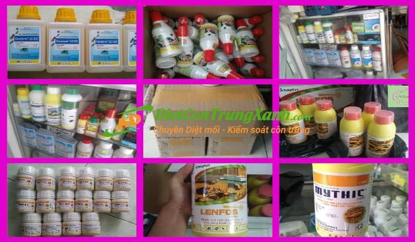 Ánh Dương - cửa hàng bán thuốc diệt mối uy tín trên toàn quốc