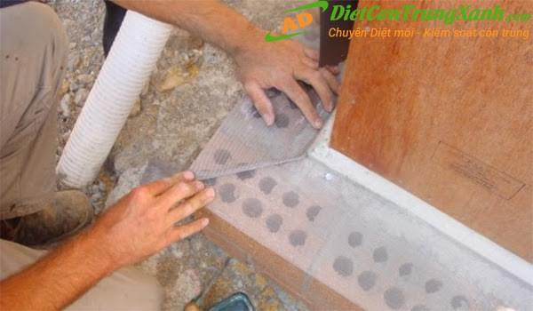 Chống mối bằng công nghệ lưới thép không gỉ Termite mesh