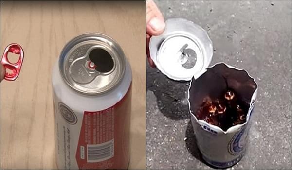 Mẹo diệt gián cực hiệu quả chỉ với 1 lon bia