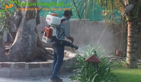Những phương pháp cơ bản để diệt và khống chế muỗi