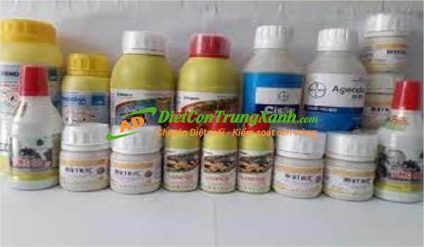 Thuốc diệt mối và địa chỉ bán thuốc diệt mối uy tín tại Hà Nội