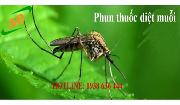 Vai trò của các loài côn trùng đối với đời sống con người